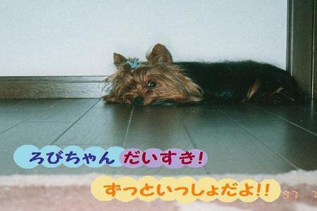 loveろびちゃん (2).jpg